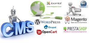 Content Management System (CMS) Website Designer